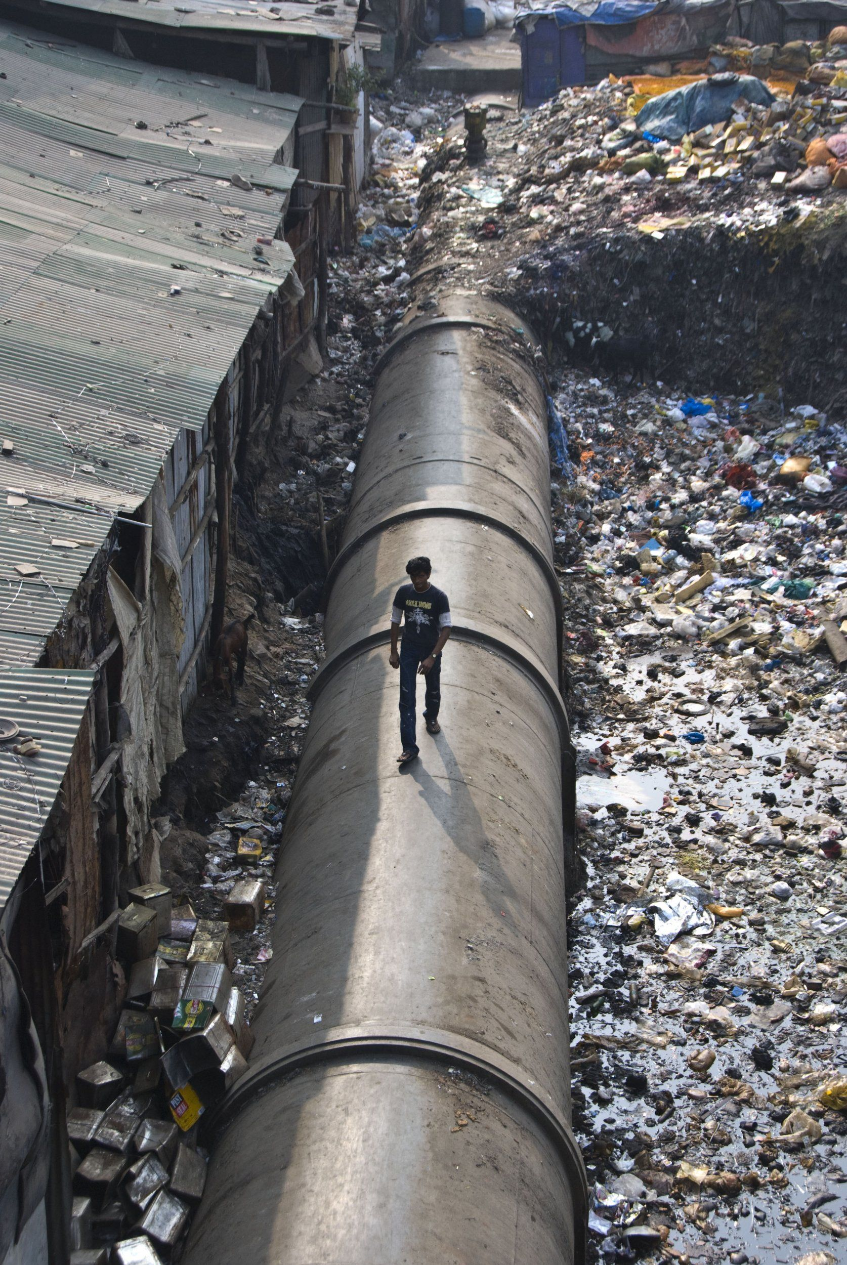 Image result for DHARAVI