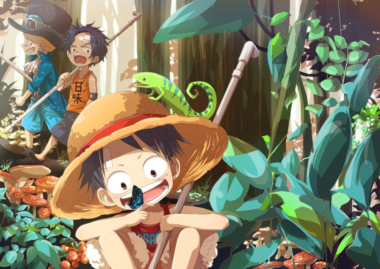 One Piece Anime HD Wallpapers