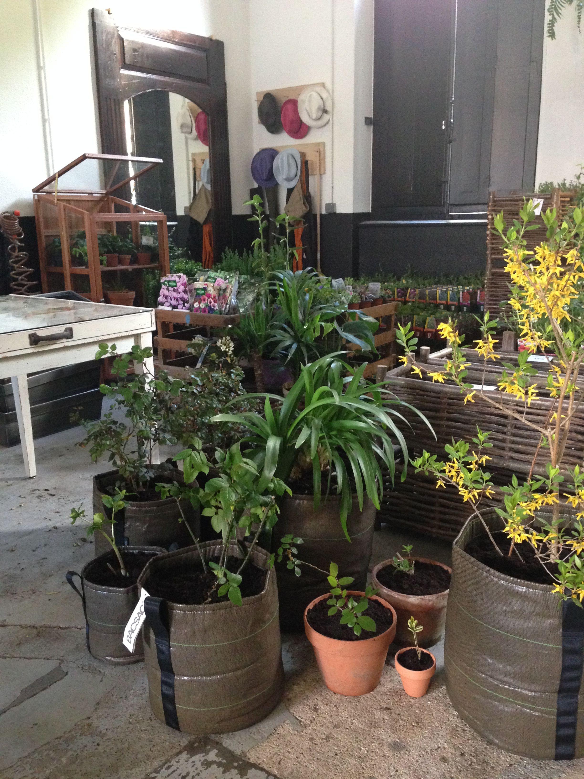 La Jolie Jardinerie Urbaine A Lyon Du Vert Au Balcon Propose Une Selection De Produits Bacsac Pour Reussir Son Jardin En Ville Facilement Vous Tro