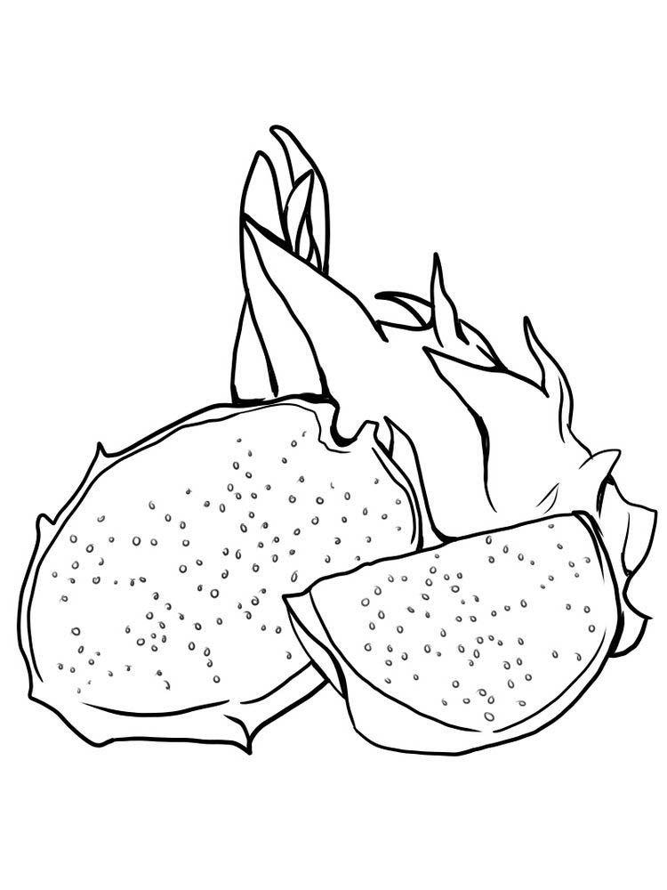 Dragonfruit Coloring Images Free ม ร ปภาพ สม ดระบายส ผลไม