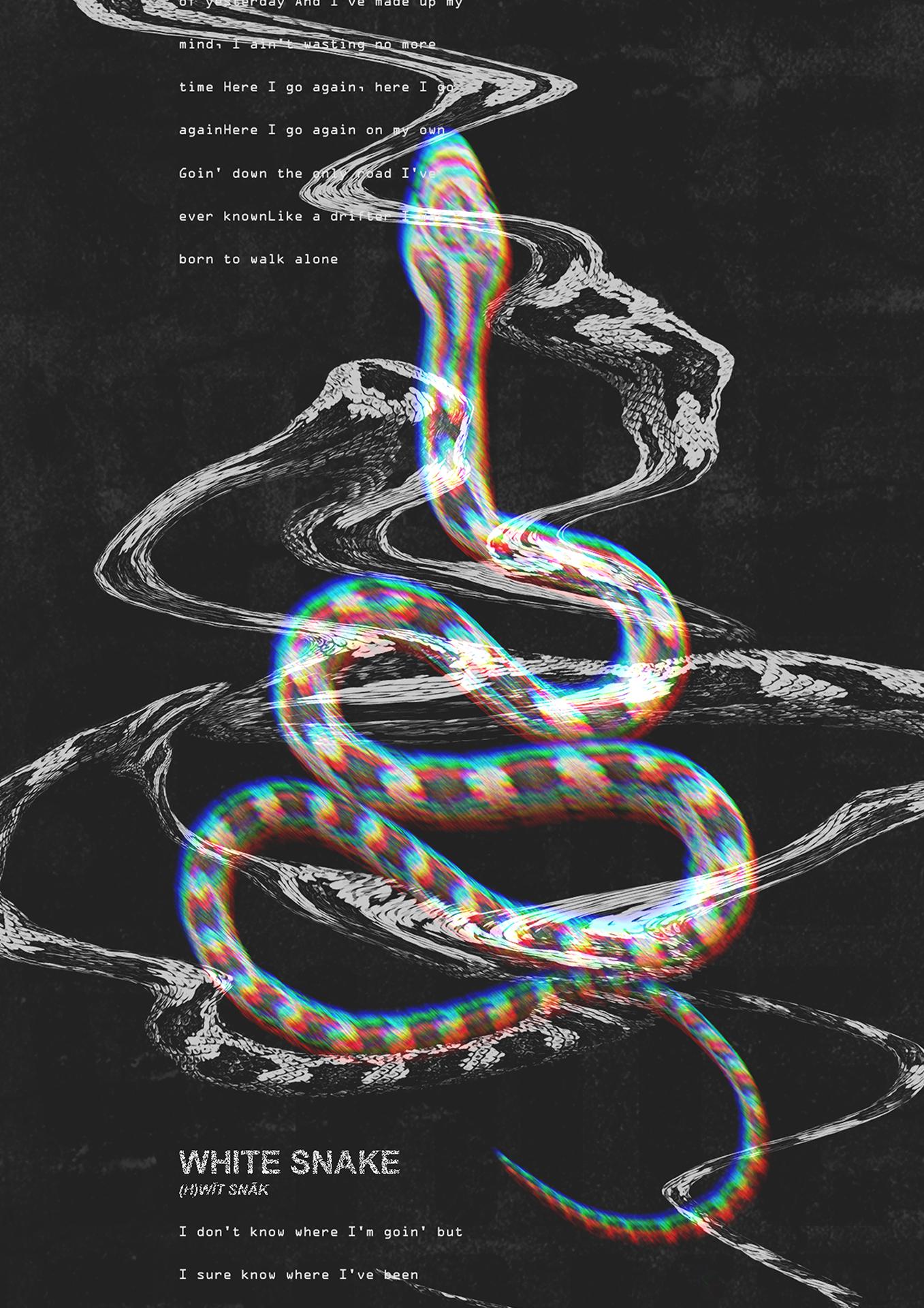 White Snake Poster Design Snake Wallpaper Typography Poster Design Graphic Wallpaper