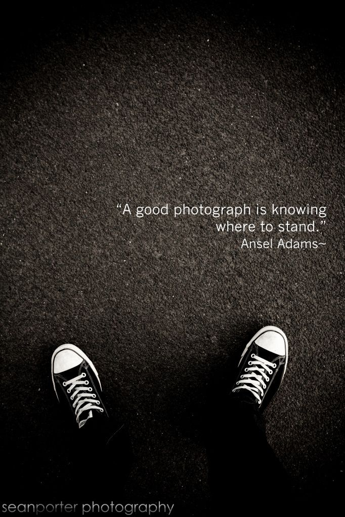 Ansel Adams. EXCELENTE IMAGEN