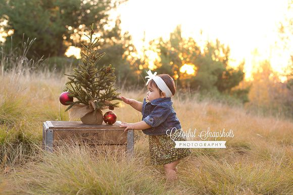 Mini Session Are Announced Http Steviecruzphotography Com Steviecruzphotography Holidaymin Christmas Photography Photographing Babies Christmas Photoshoot