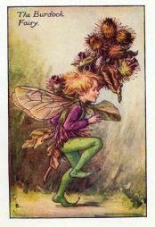 Burdock Flower Fairy Print by Cicely Mary Barker