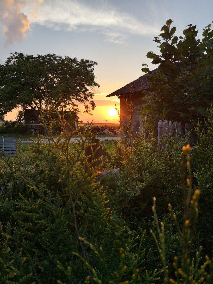 Pin By Monika Borowska On Ogrod Celestial Outdoor Sunset