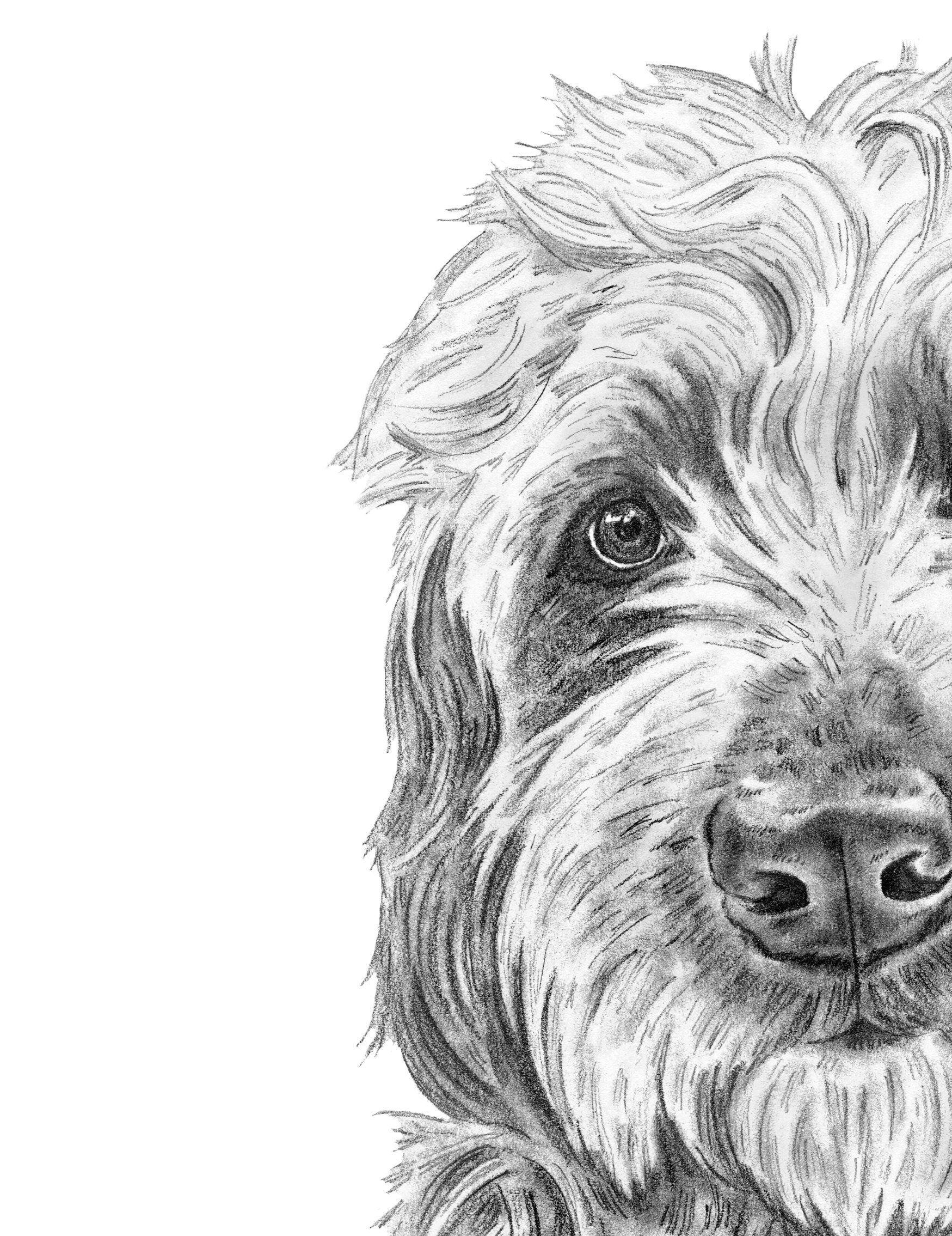 Goldendoodle Art Dog Art Golden Doodle Art Labradoodle Etsy In