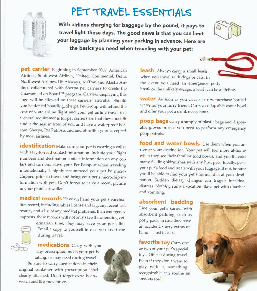 Jetting With Pets Don T Forget To Pack This Pet Travel Checklist