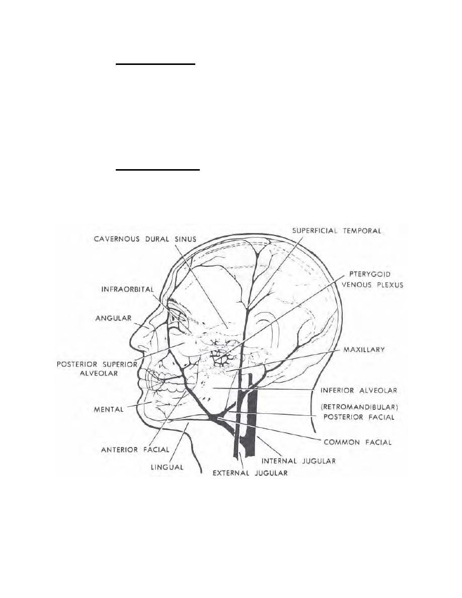 moyamoya... My daughter had Superficial temporal artery to middle ...