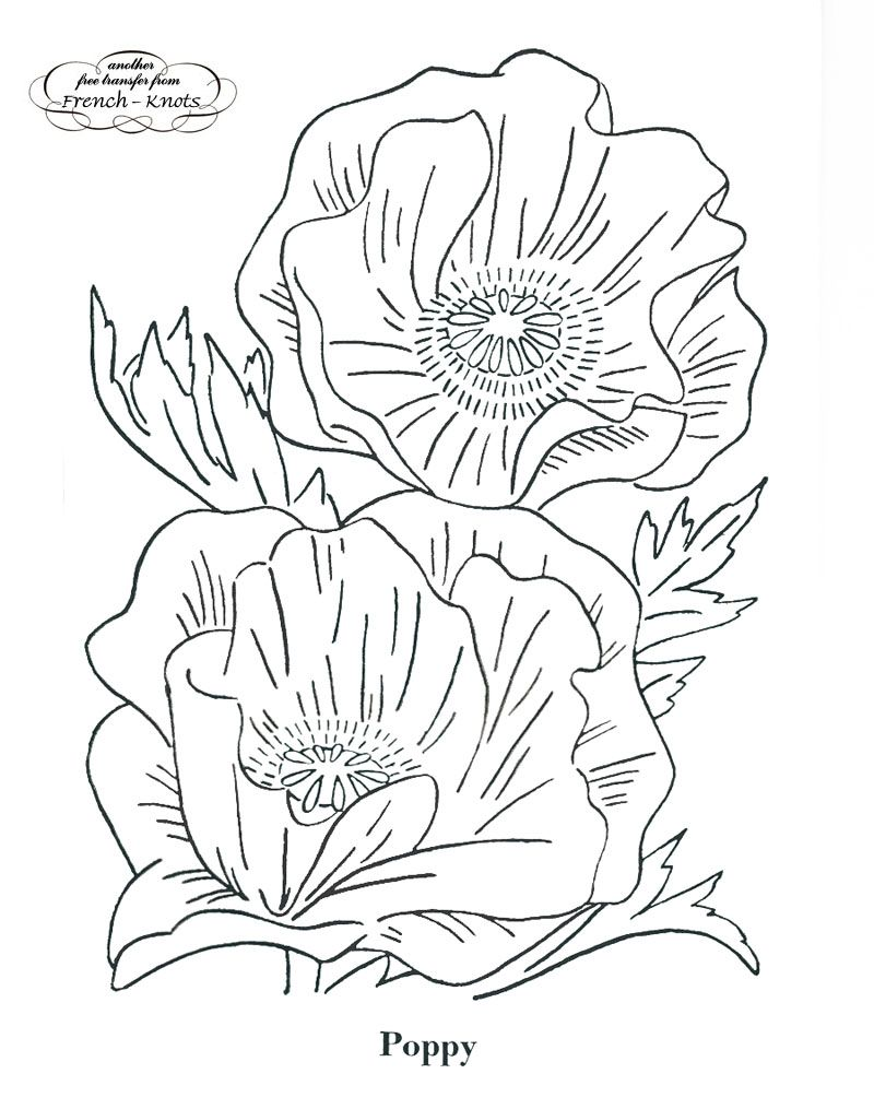 Poppy embroidery transfer pattern embroidery pinterest poppy embroidery transfer pattern bankloansurffo Gallery