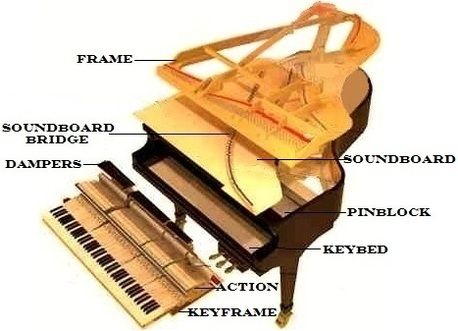 2b9f5b7f00a0f70e5ae7ca80c4da7eb4 something that all pianists should know! the different parts of a piano diagram at sewacar.co