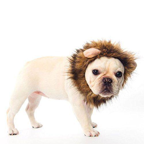 Stonges Pet Costume Lion Mane Wig For Dog Cat Halloween Dress Up