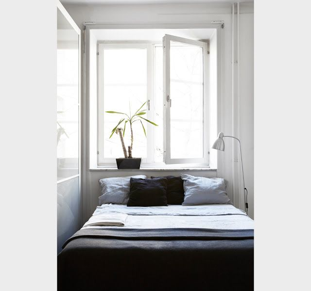 Small space in black, white and blue. Fantastic Frank