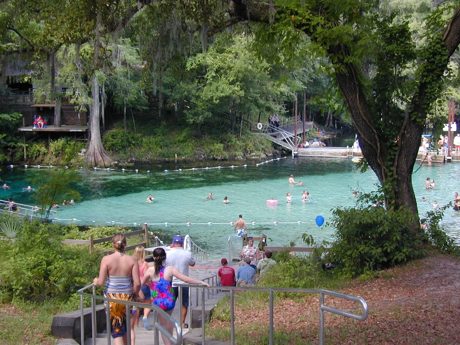 Florida Springs 19 Fanning Springs Fl 32693 Phone