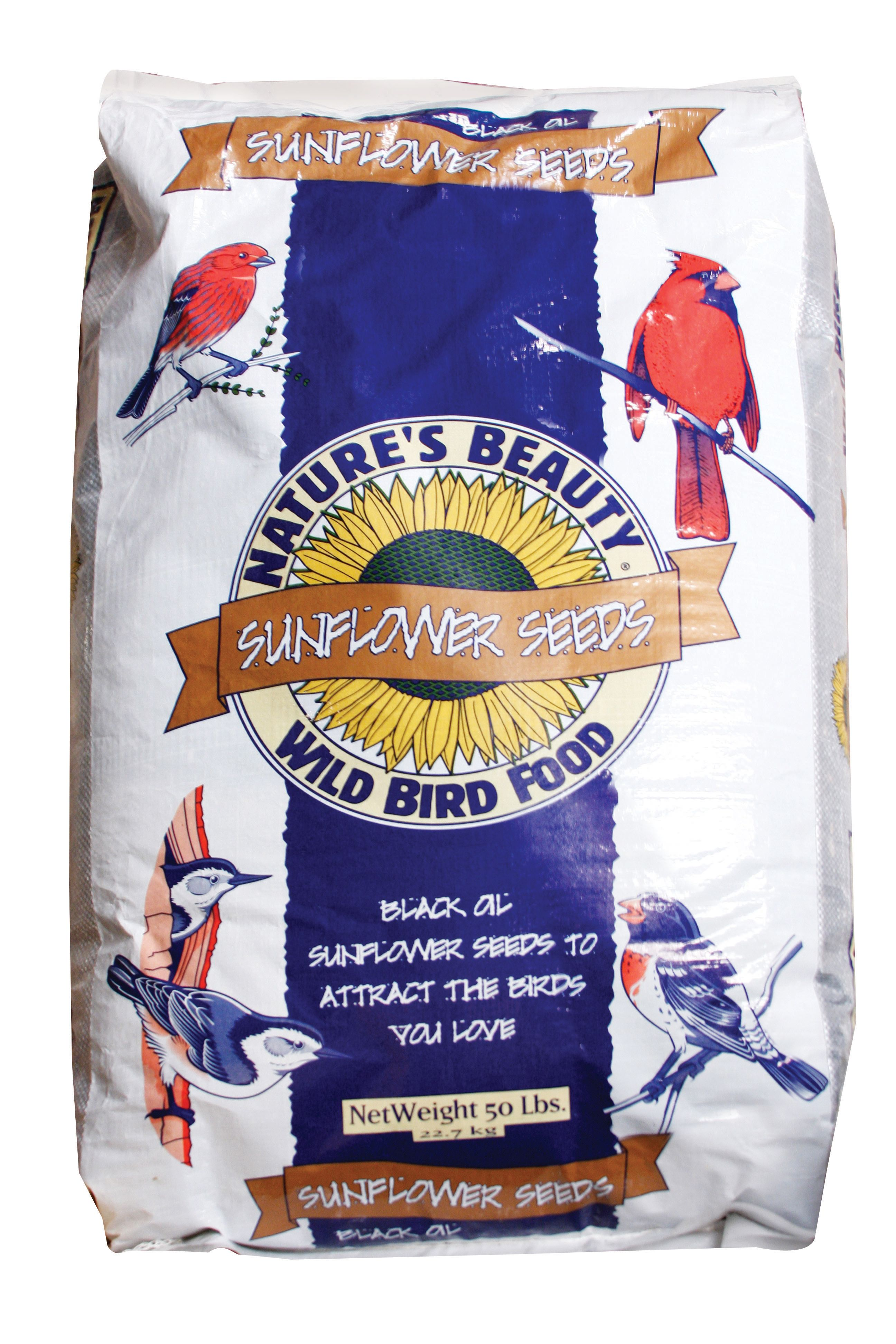 Attract beautiful birds to your backyard by filling up