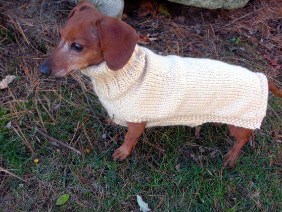 Small Dog Sweater Pdf Pattern Mini Dachshund Doxie Sweater My