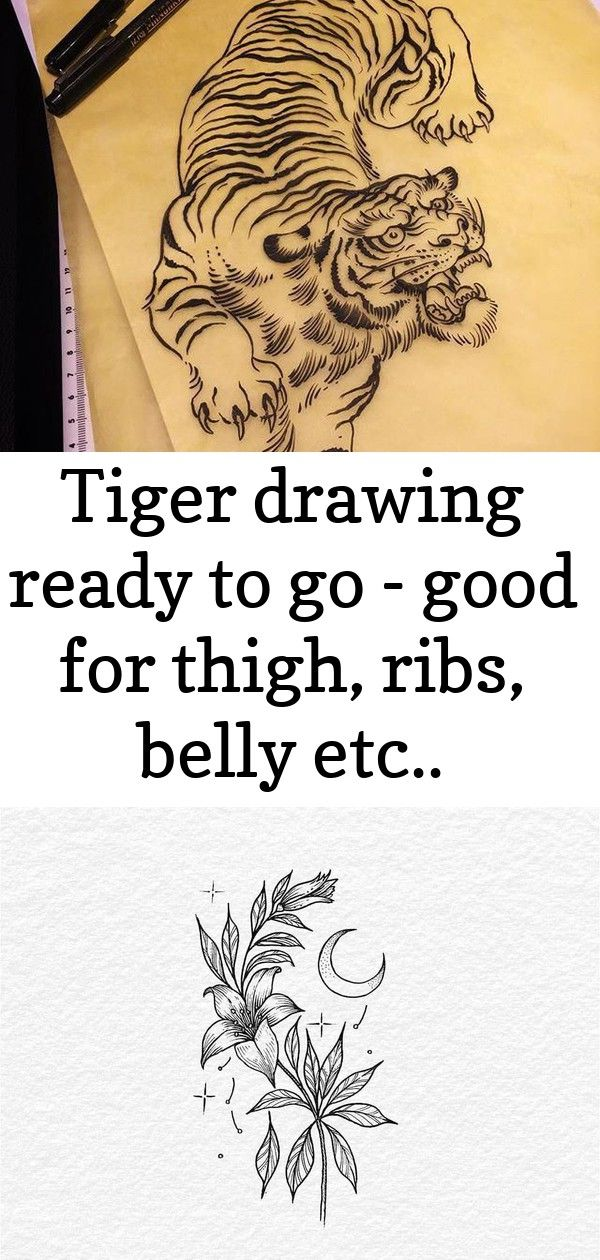 Tiger drawing ready to go  good for thigh ribs belly etc wdozer666 if you want it 8 Tiger drawing ready to go  good for thigh ribs belly etc wdozer666 if you want it Flow...