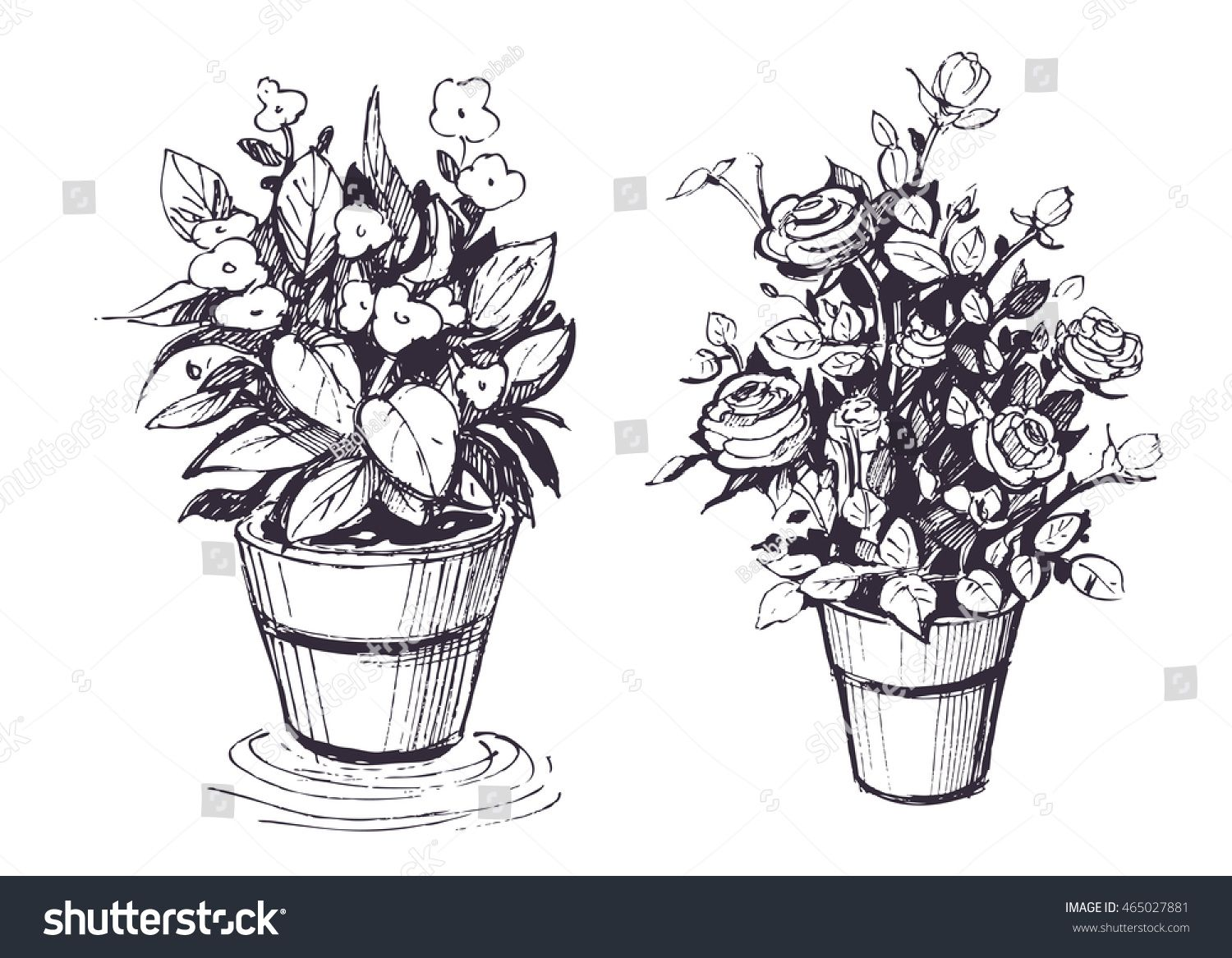 Image result for sketches of flowers in a flower pot