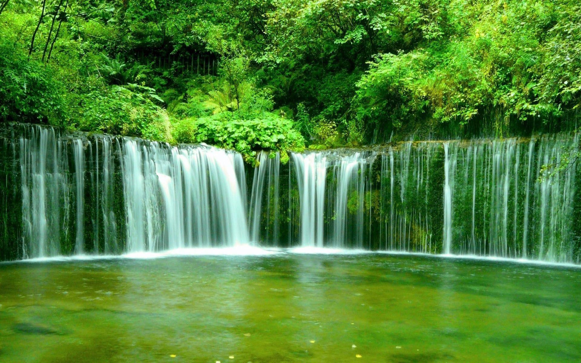 rainforest waterfalls Waterfall In Forest Fond ecran