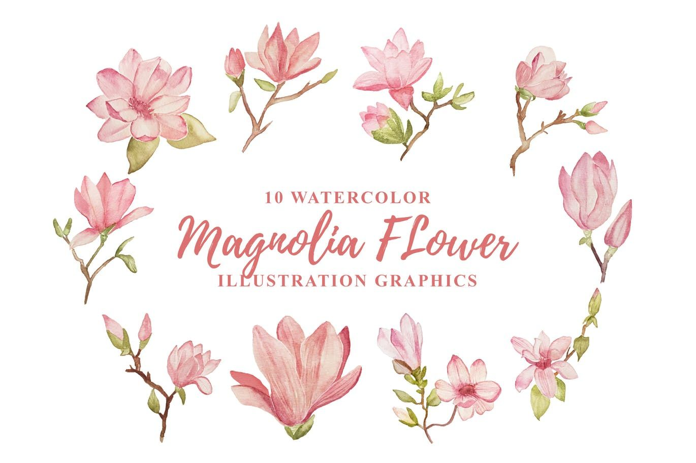 10 Watercolor Magnolia Flower Illustration Graphic By Ianmikraz On