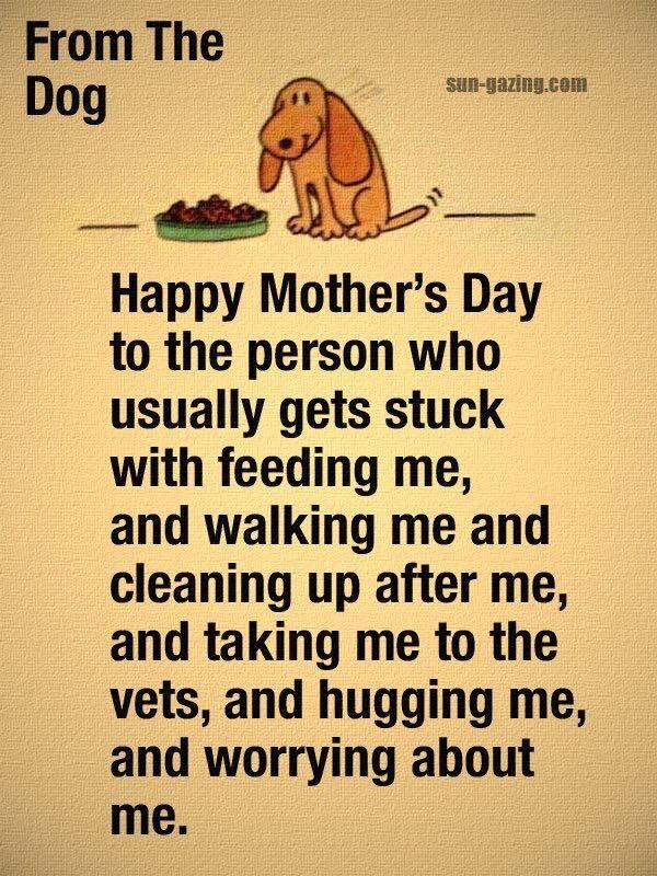 Monik Landar Photos From Monik Landar S Post In Happy Mothers Day Dog Quotes Happy Mothers