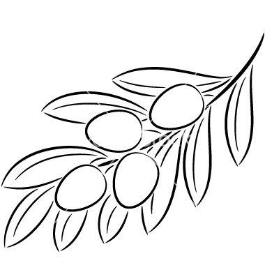 Olive Branch Vector Image On Cizim Zeytin Agaci Cizimler