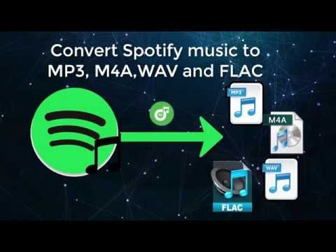 download spotify songs to mp3 player