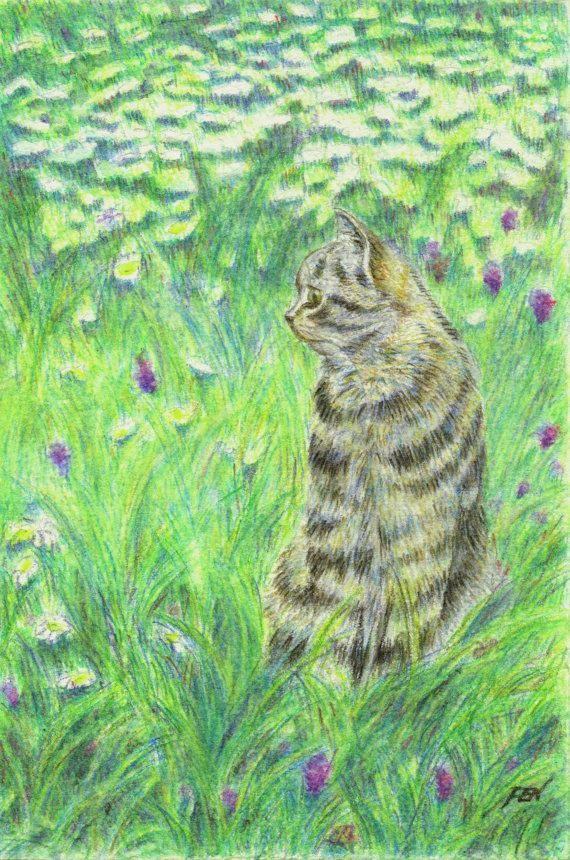Cat Drawing Grass Flowers And A Cat Grey Tabby Cat At Garden Decoration For Kitchen Room Desk Country Cot Cat Art Illustration Cat Art Watercolor Cat