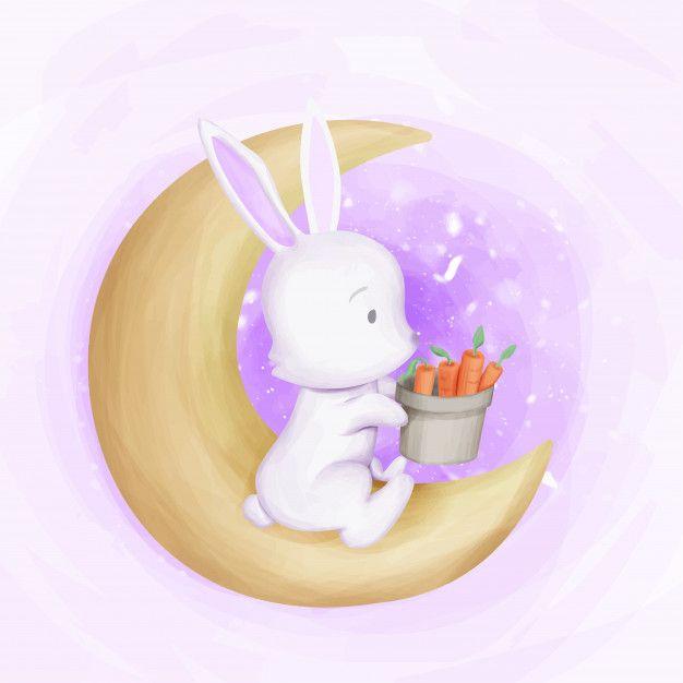 Rabbit Autumn Season Get Carrots