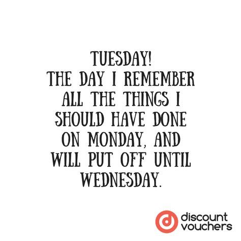 Tuesday quotes image by Custom Decals on Tuesday in 2020 ...