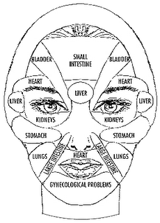 Face Reading In Chinese Medicine Pdf