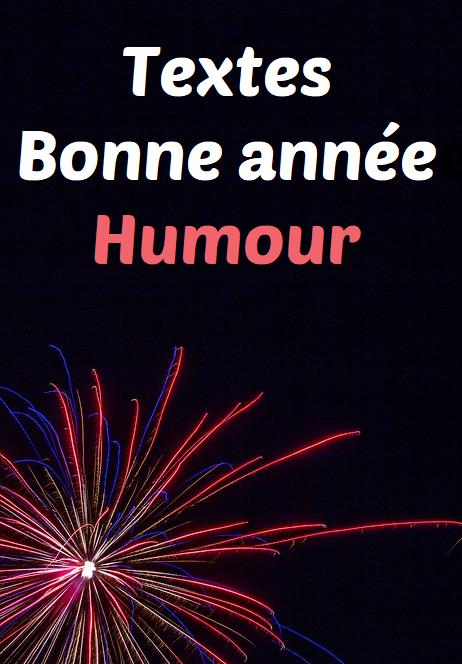Message Bonne année rigolo