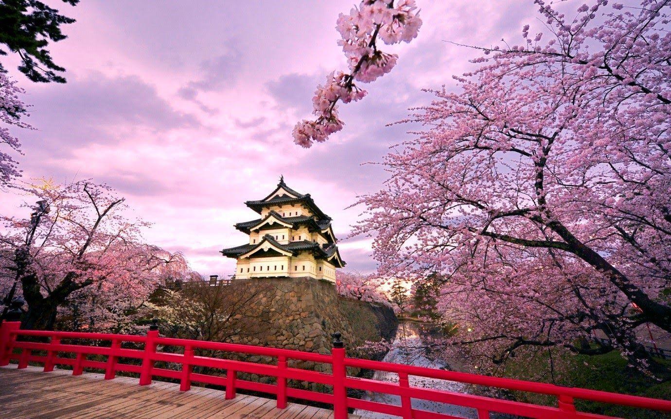 Chia sẻ kinh nghiệm chọn trường du học Nhật Bản