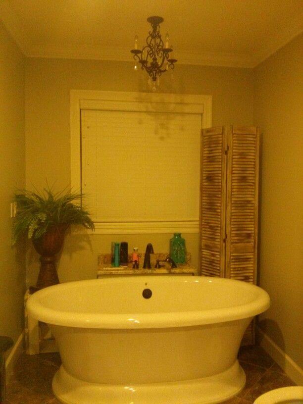 Reused, Repainted Shutter Style Closet Doors