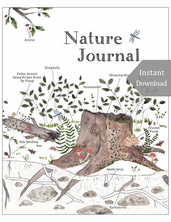 Nature Journal Pdf