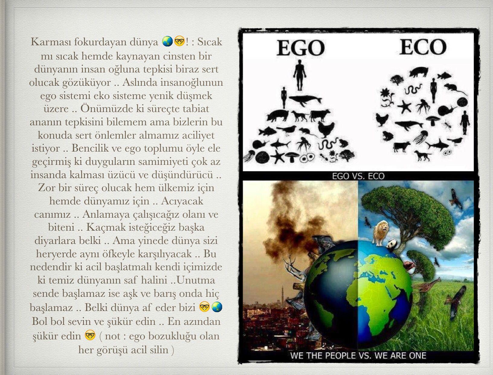 Ego eco world