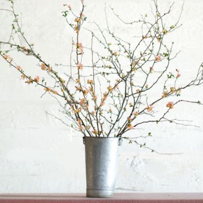 @krsswns // Salmon Quince Branches