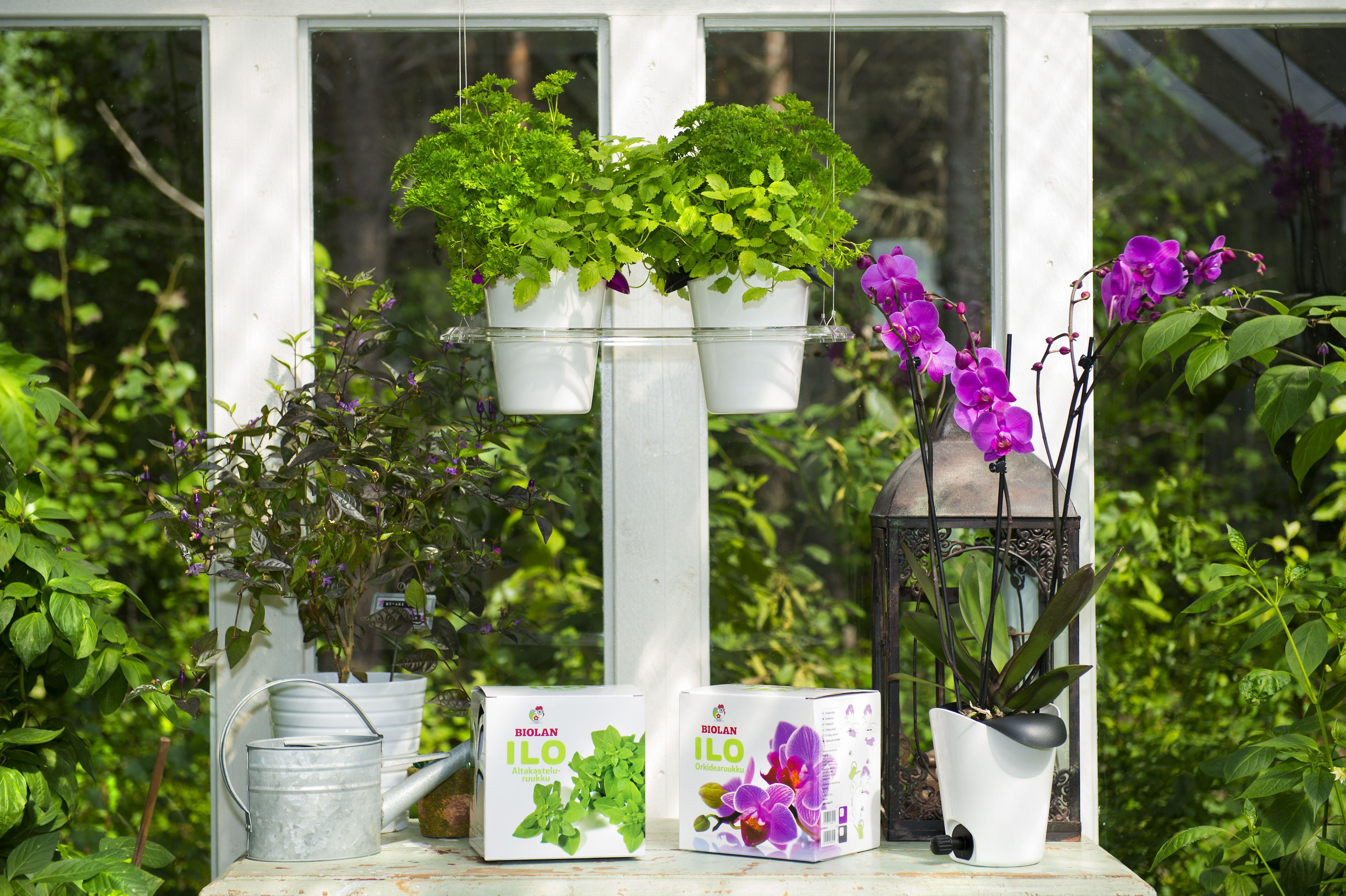 Ilo-kasvatussarja   Ilo-kasvatussarja on toiminnaltaan ja muotoilultaan täysin uudentyyppinen ja viimeistelty modulaarinen tuotesarja. Se mahdollistaa koriste- ja keittiökasvien kasvattamisen pöytä- ja lattiatilaa säästäen