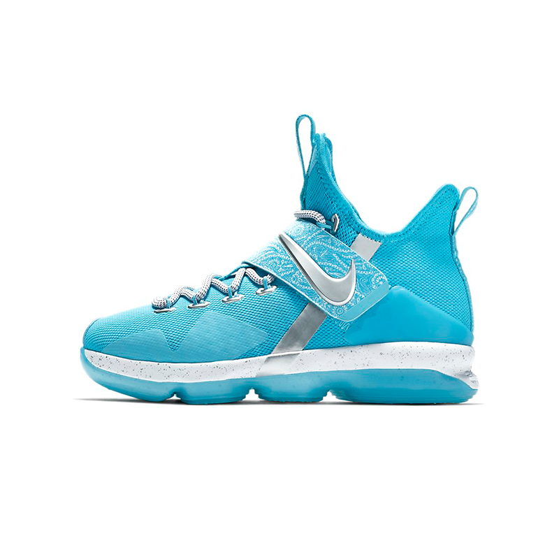 watch af5b4 53049 AA3258-404 Nike LeBron 14 GS WWE The Nature Boy | Shoes for ...