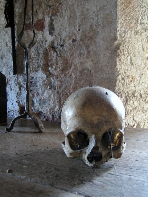 This Human Skull sits on a table in the room where Edward II was brutally murdered at Berkeley Castle. The skull was found at the Castle but no one knows who it was........    3 skeletons were dug up in the Castle in the early part of the 20th Century, We found this sick! pic of Human Xray. We found it here - http://www.whoodie.com/edgy-clothing-c-54.html
