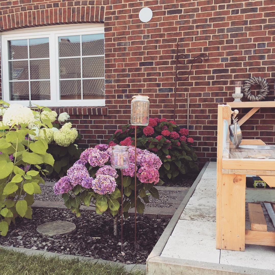 Hortensien Gartendeko Sommer Sonne Gartengestaltung Garten Gartenideen Gartendeko Diygarden Gardening Teel Garten Deko Garten Garten Ideen
