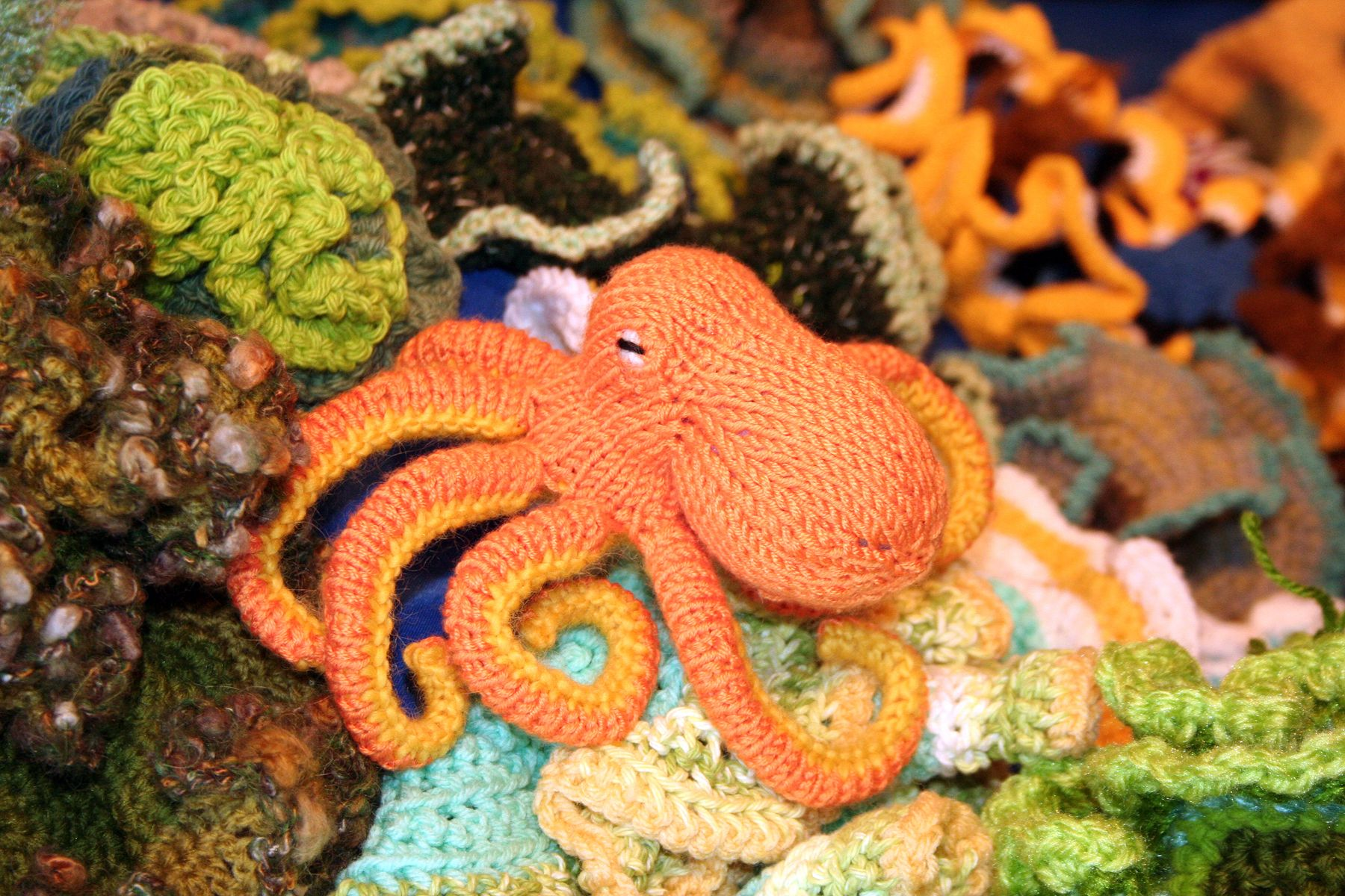 Octopus. The Crochet Coral Reef is a woolly celebration of the ...
