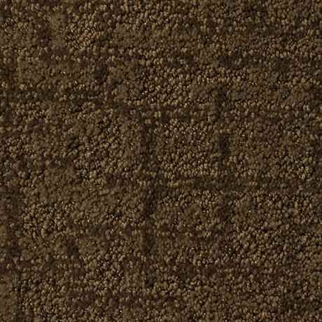 CAPRICE FLYBY Pattern Active Family™ Carpet - STAINMASTER®