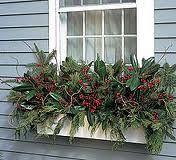 best winter planters - Google Search