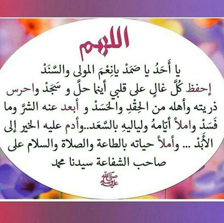 Desertrose اللهم آمين يارب العالمين Arabic Quotes Morning Quotes Words