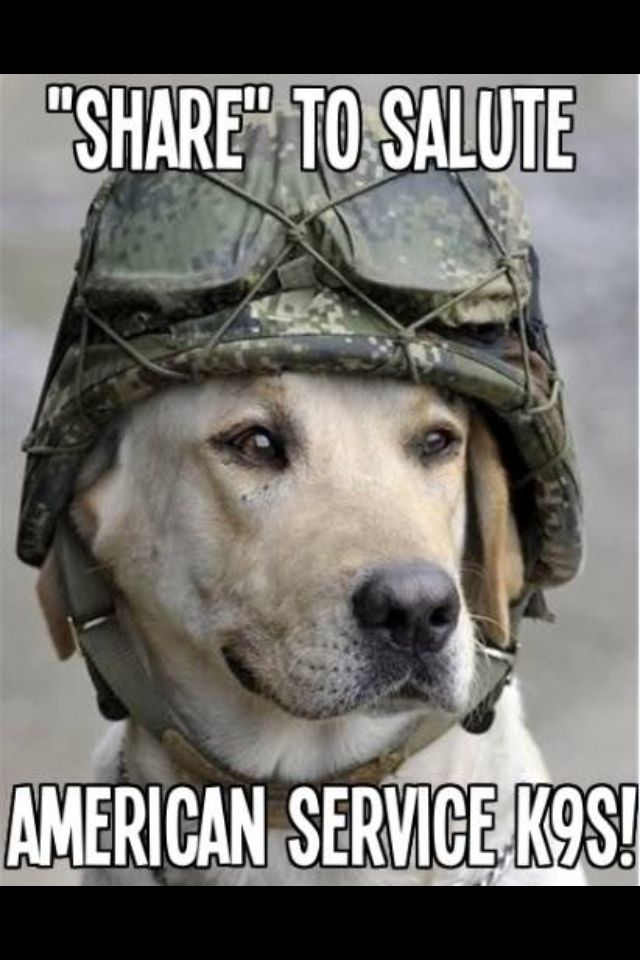 Thanking All For Their Service Never Forget Military Dogs