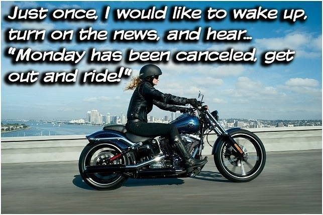 Get Out And Ride Whyweride Chicks On Bikes Female Motorcycle Riders Harley
