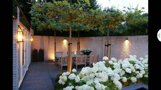 Ommuurde tuin erg sfeervol garden tr dg rd uteplats - Estanque terraza piso ...