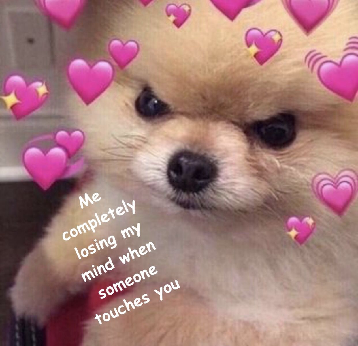Pin by ・。𝔍𝔬𝔰𝔦𝔢。・ on Lovey Feels Cute love memes