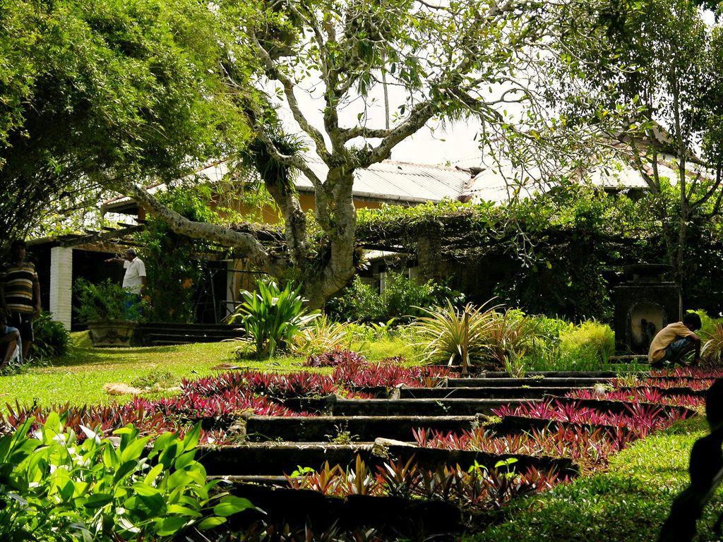 Google Image Result For Http 2 Bp Blogspot Com Iresqjmvgza S9ortm4t Ci Aaaaaaaabfi Ctiz4lumz Small Garden Design Landscaping Around House Home Garden Design