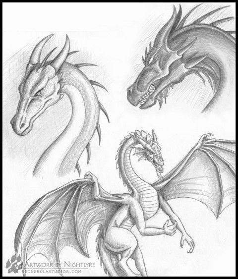 dibujos de dragones  Dragones  Pinterest  Dibujos de dragn